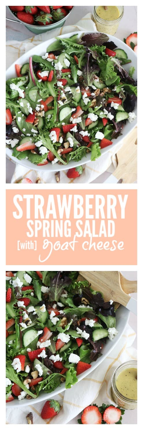 Aspringseasonalsaladfeaturing mixed greens, slicedstrawberries, andgoat cheese, tossed together in a Dijon Vinaigrette - this salad is perfect as a side, or complete meal with your favorite protein! #salad #strawberries #cheese