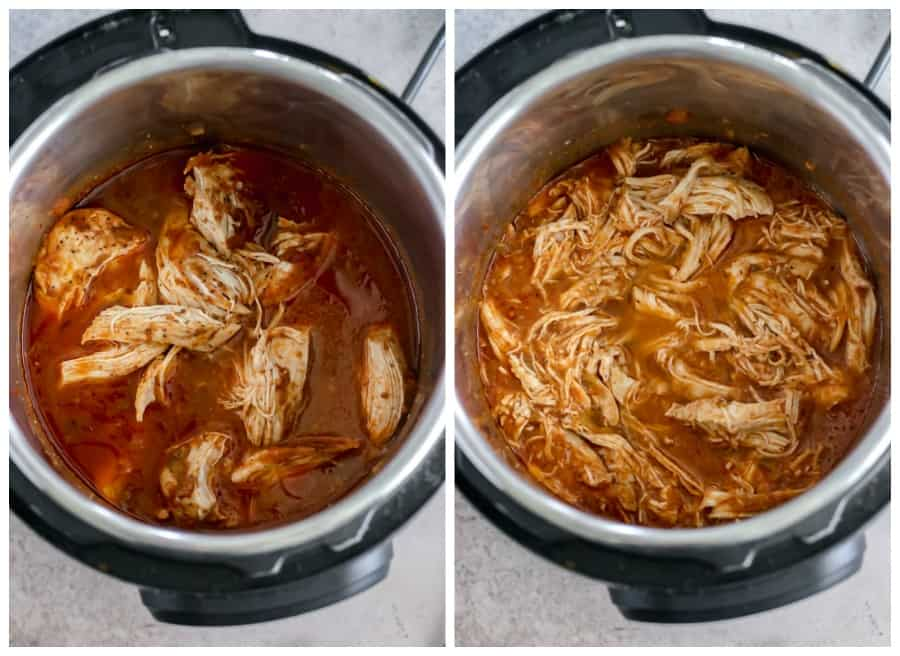 salsa shredded chicken