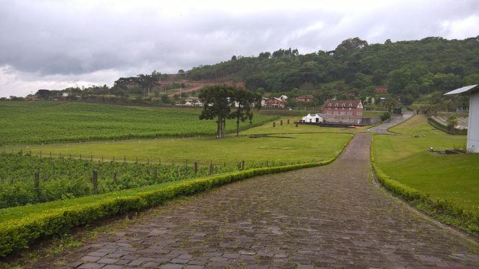 vinicola-luiz-argenta-9
