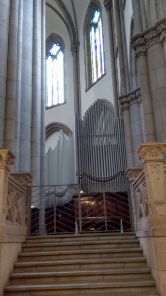 Catedral da Sé Órgao