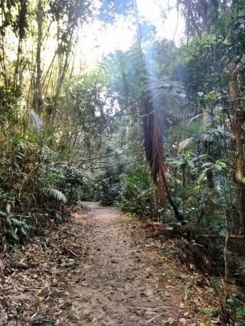 Parque São Francisco de Assis Blumenau