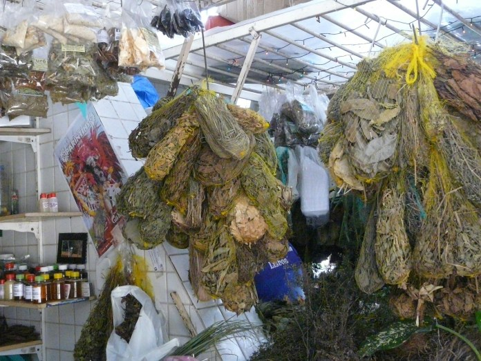 Mercado Adolpho Lisboa Manaus Ervas e Chás