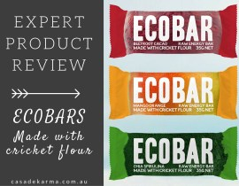 EXPERT PRODUCT REVIEW - ECOBAR MADE WITH CRICKET FLOUR