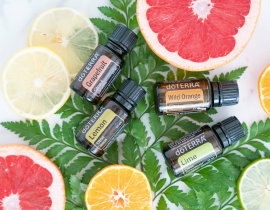 how to buy doterra essential oils