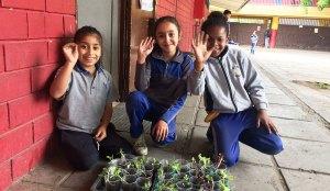 educacion-desarrollo-sustentable-01