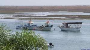 Festa_dos_Pescadores_15_Boats_3 - Copy