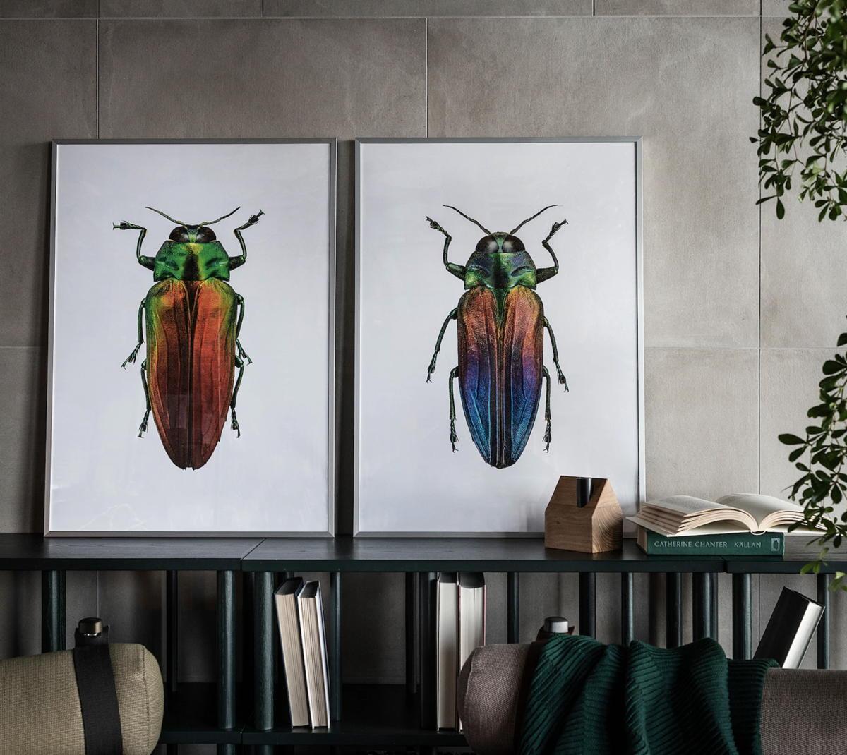 Abete spessore 2 cm consegna: Ikea Quadri Soggiorno Pictures Fundomega1 Com
