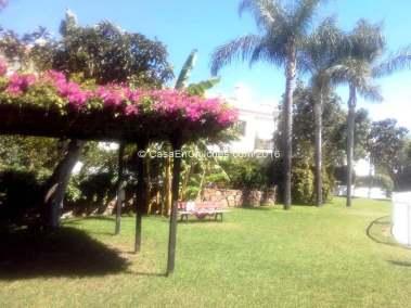 Jardines y zonas comunitarias, piscina