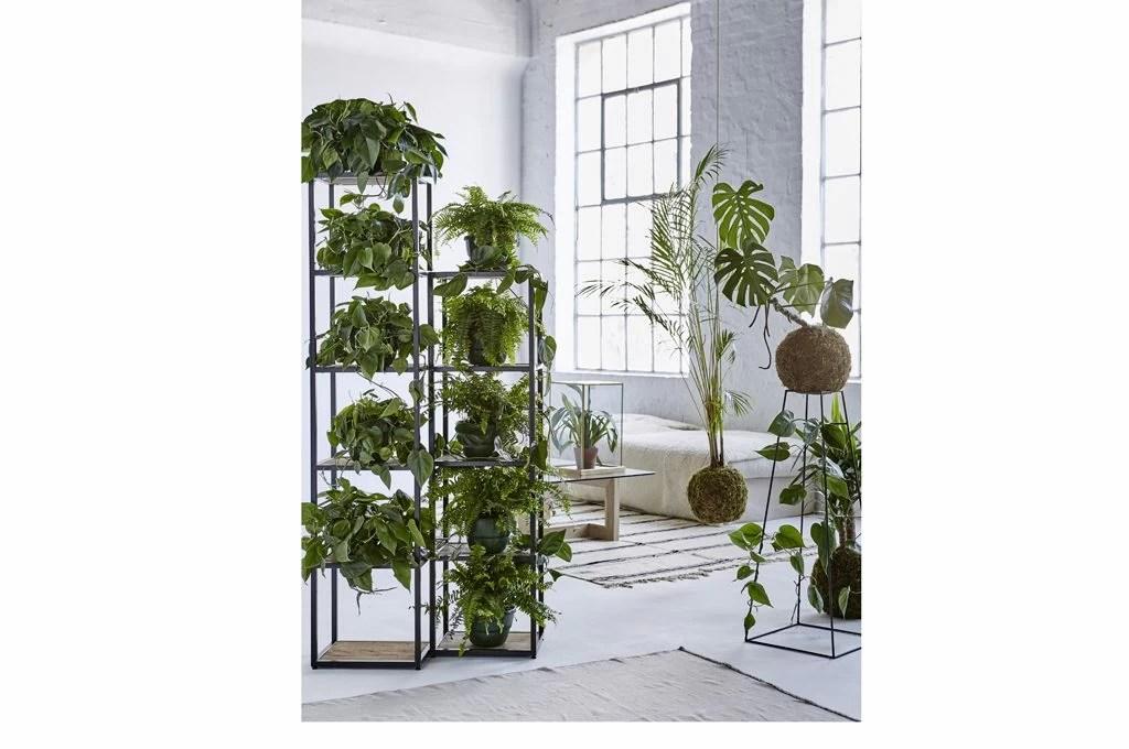 Scaffali e pannelli nuovi spazi per le piante in casa  CASAfacile