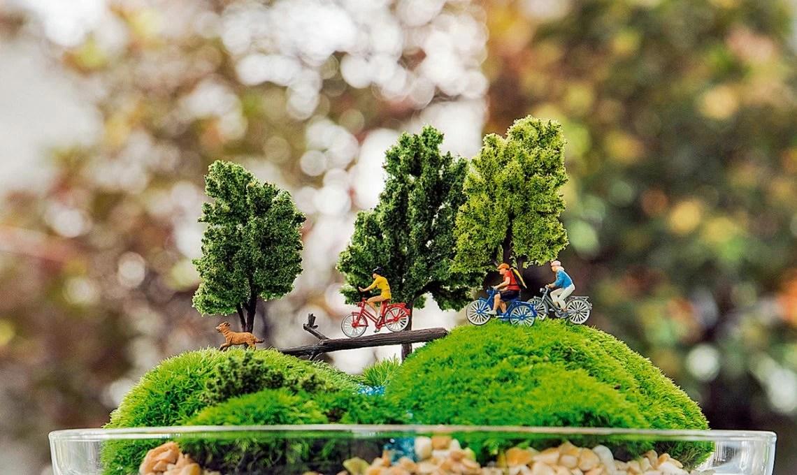 Terrario il fascino dei giardini sotto vetro  CASAfacile