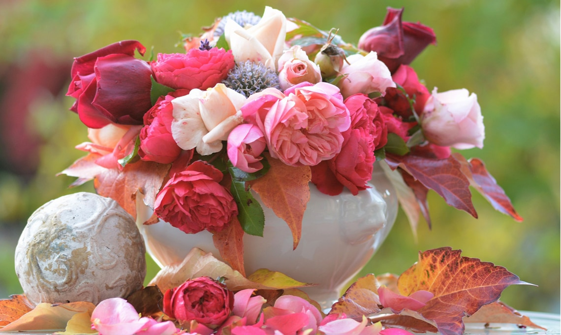 Come far durare le rose recise  CASAfacile