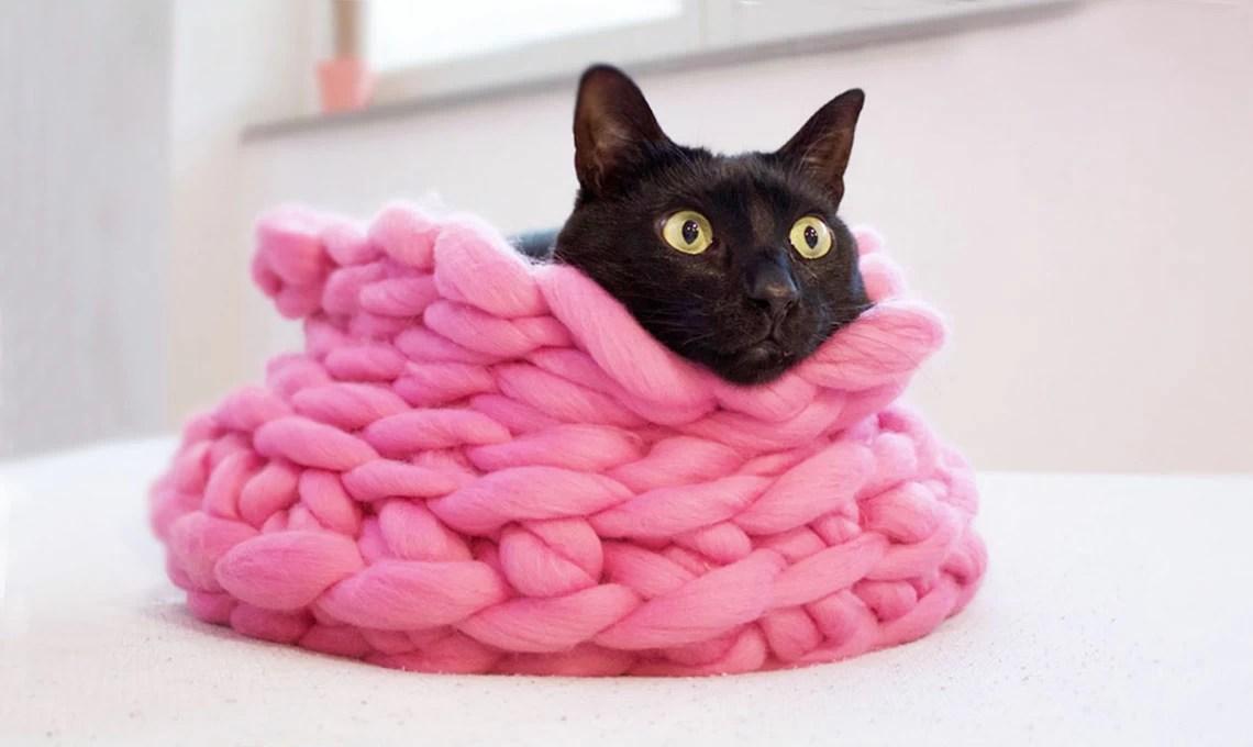 Realizzare Un Cuccia Per I Gatti In Lana Casafacile