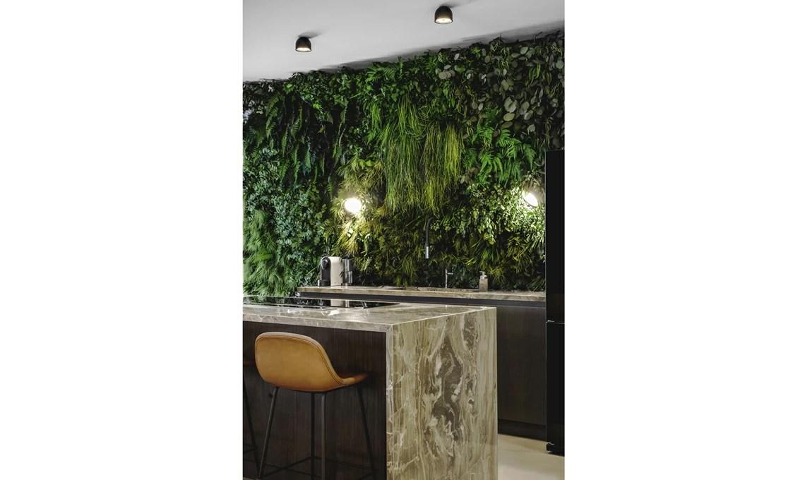 Piante stabilizzate per realizzare una parete verde in