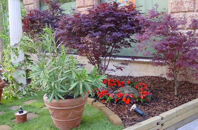 Curare il giardino nel mese di settembre  Pagina 2 di 4