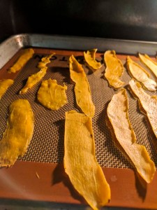 Mango dehydrating in oven