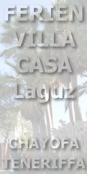 FEWO - Ferienvilla Casa LaGuz Teneriffa