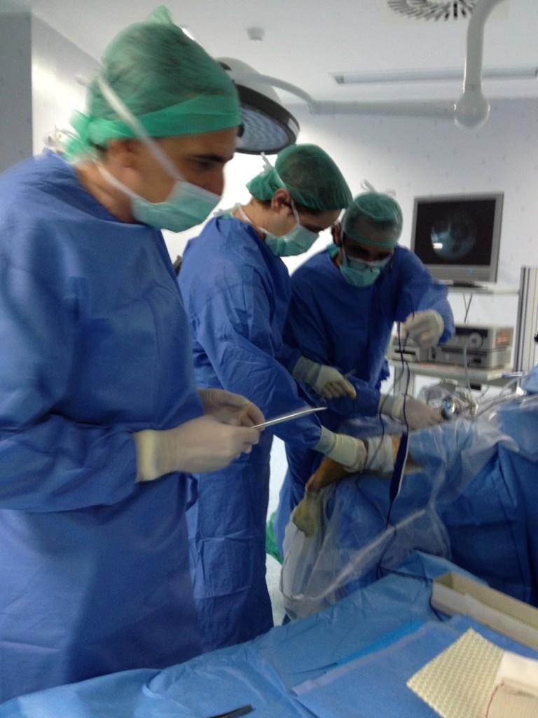 Cirujano de columna en Madrid Tobillo