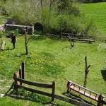 casa-monaut-jardín-2