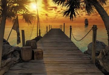 8-918 Treasure Island