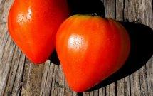 Consigli per congelare i pomodori (sempre pronti all'uso)