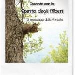 Libri da leggere: Incontri con lo Spirito degli Alberi