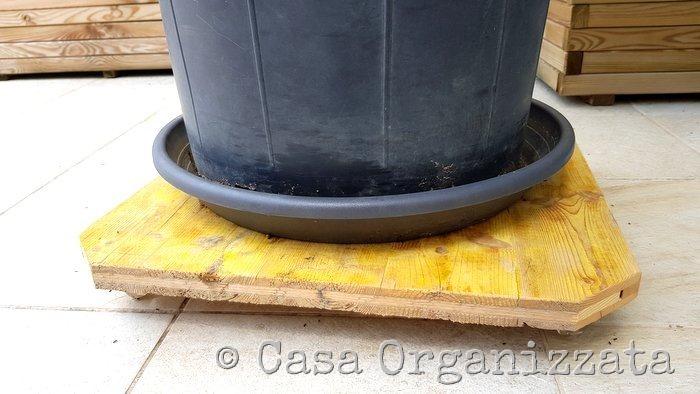 coltivare un limone sul terrazzo - la soluzione per spostarlo senza faticare