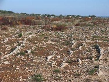 Paesaggio Carsico Doline