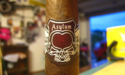 Asylum Premium