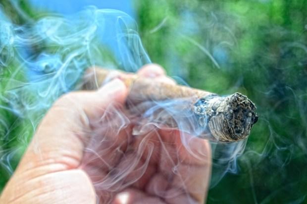 My Father Cigars La Antiguedad