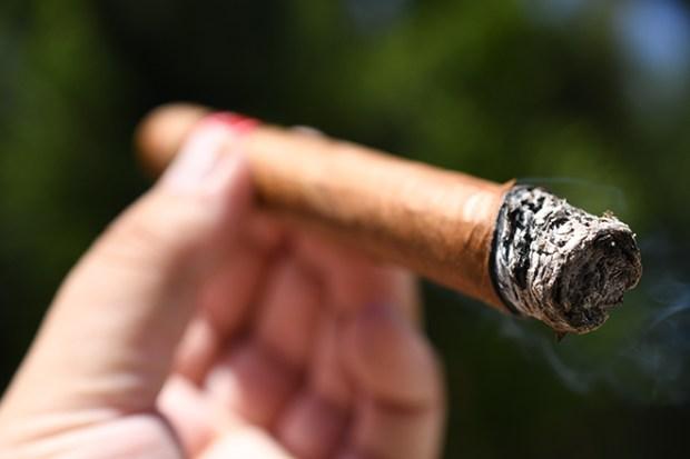 HVC Cigars La Rosa 520 Reyes