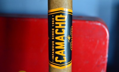 Camacho BxP Connecticut