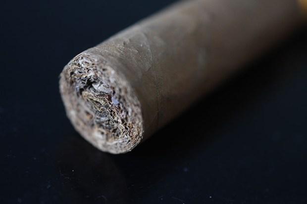 cohiba-robustos-5