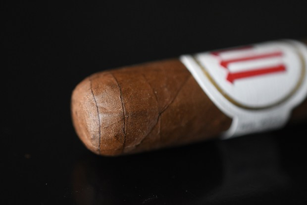 the-crowned-heads-mil-dias-4