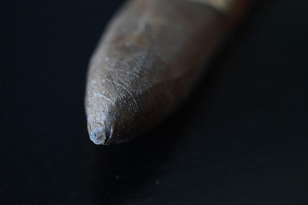 southern-draw-firethorn-augusta-4