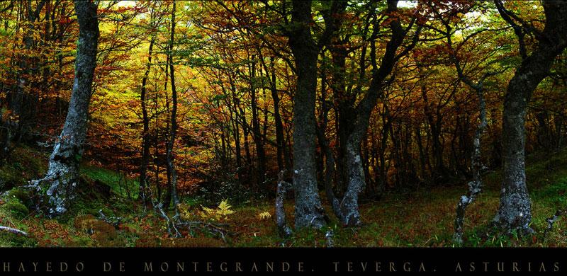 Ruta de senderismo de Teverga, Asturias