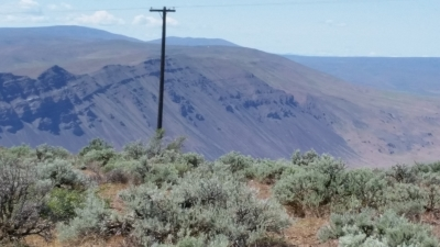 Saddle Mountain