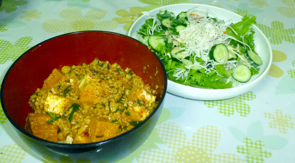 Mapo tofu served over brown rice with a side salad