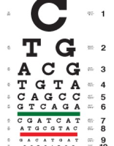 Eye chart with dna bases also charts rh cascadilla