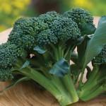 Broccoli Hybrid