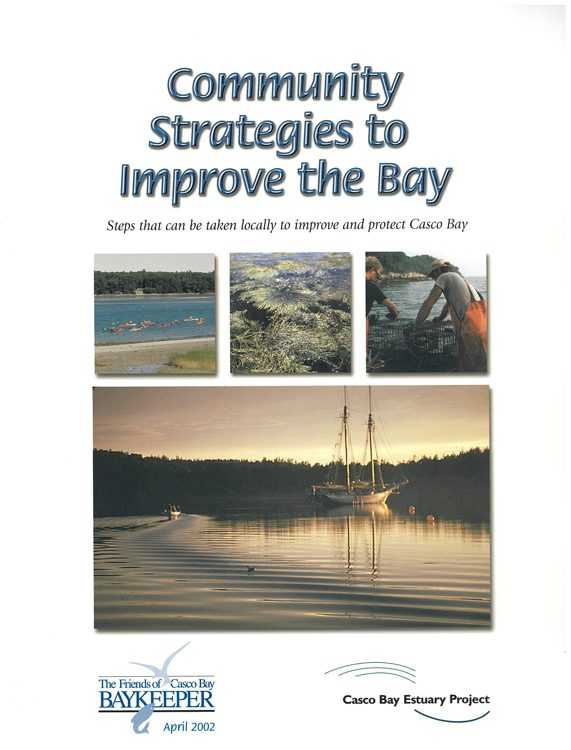 Local strategies to help the Bay