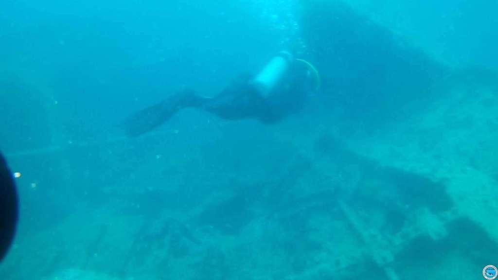 Viajando a bucear en las aguas brasileiras 51