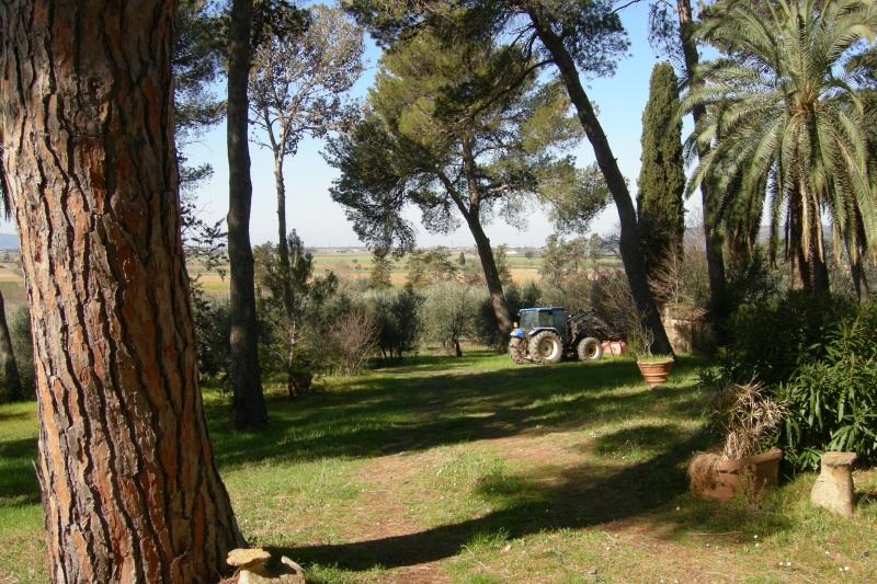 Villa storica nella campagna toscana a pochi minuti dal mare  Case di LussoitCase di Lussoit
