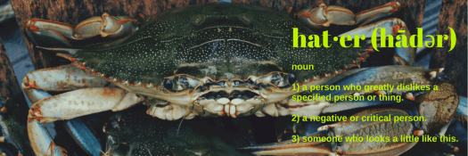31 Things I Know Now That I'm 31- 10 — No One's Harder On Me Than ME. — The Definition of a Hater (Crabs in a Bucket)