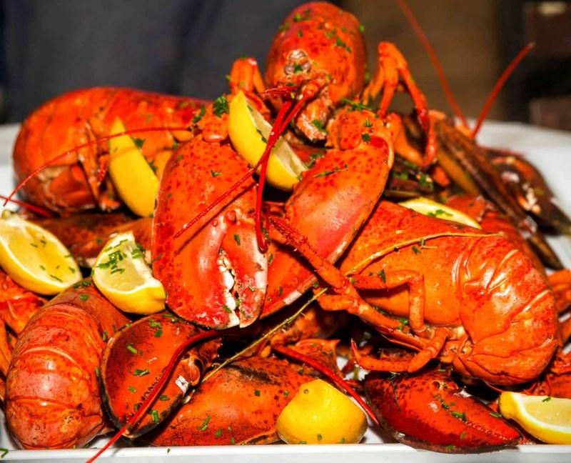Stop Being So SHELLFISH! #LobstahPalooza2015 — An Adventure in Atlantic Ambrosia! — Atlantic Lobster