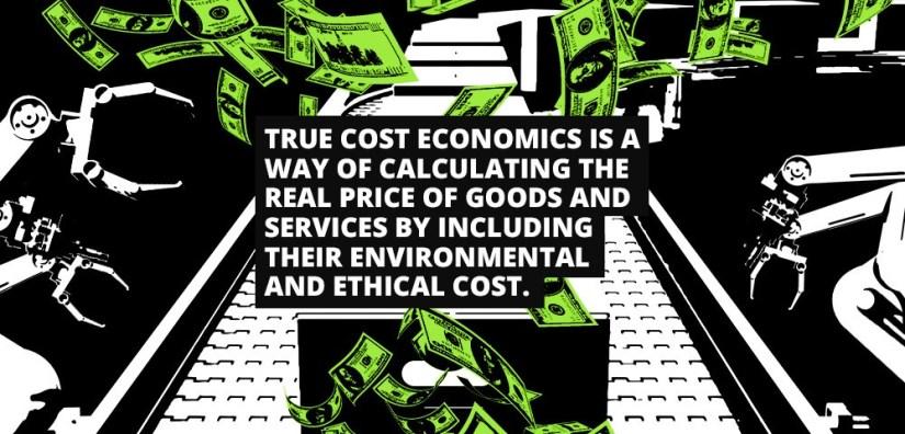 True cost economics