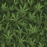 weed leaf background