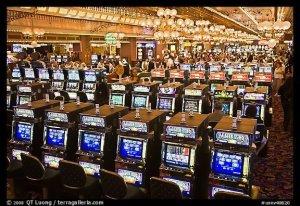 Rows of slot machines. Las Vegas, Nevada, USA. (Image: terragalleria.com)