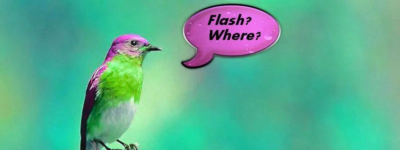 Flash - Where?