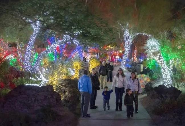 Ethel-M-Holiday-Cactus-Garden-Lights