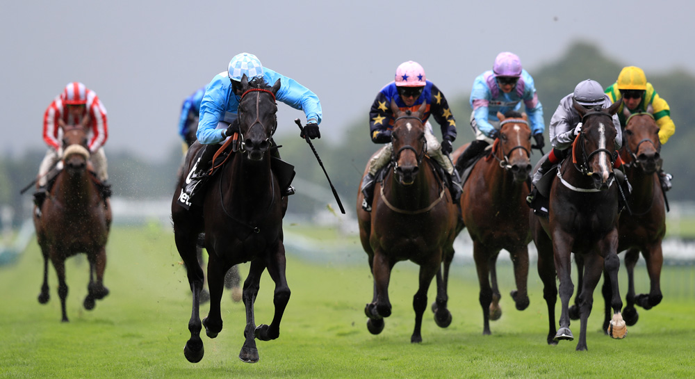 How Did Horse Racing Get So Popular?